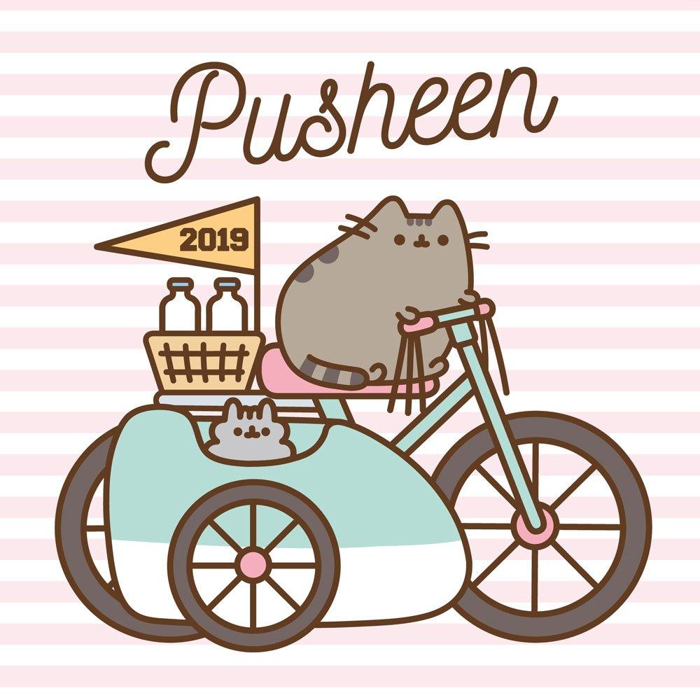 Pusheen Calendar 2019 English Version*