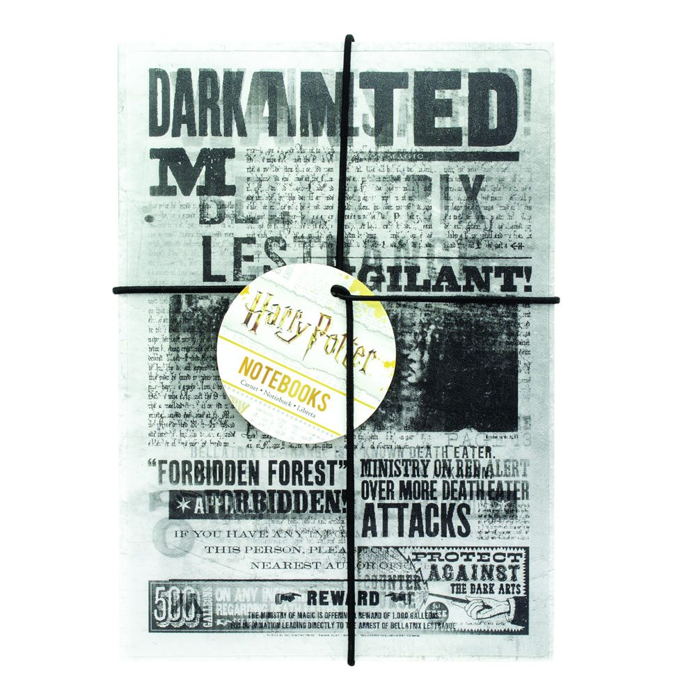 Harry Potter Notebook 2-Pack Dark Arts