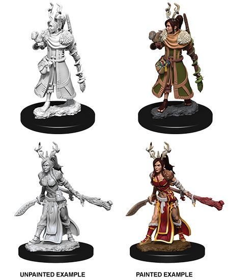 D&D Nolzur's Marvelous Miniatures Unpainted Miniatures Female Human Druid Case (6)