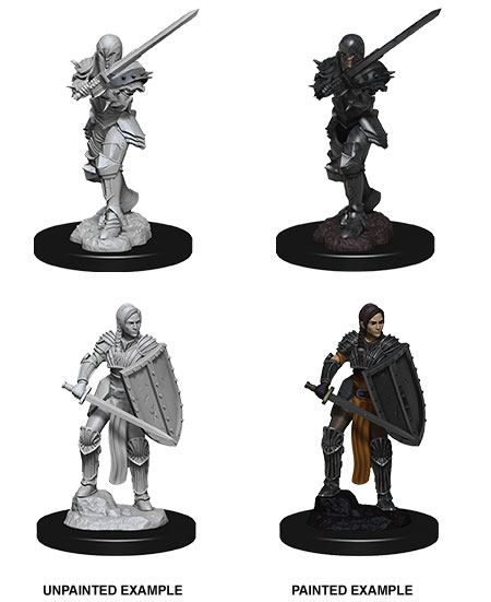 D&D Nolzur's Marvelous Miniatures Unpainted Miniatures Female Human Fighter Case (6)