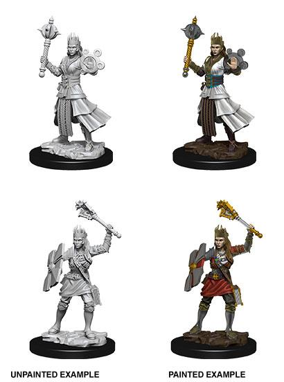 D&D Nolzur's Marvelous Miniatures Unpainted Miniatures Female Human Cleric Case (6)