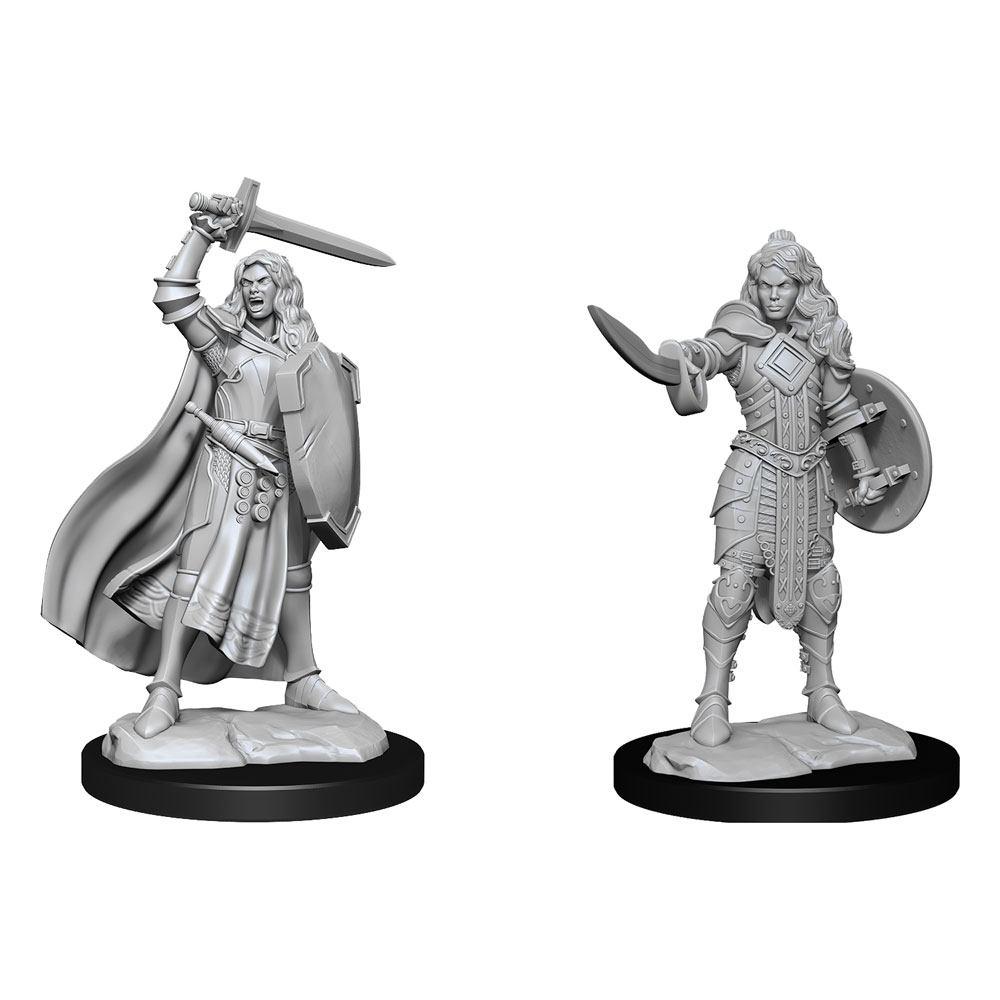 Pathfinder Battles Deep Cuts Unpainted Miniatures Human Champion Female Case (6)