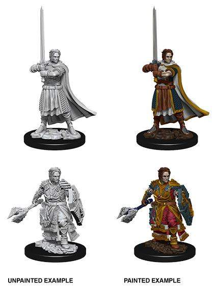 D&D Nolzur's Marvelous Miniatures Unpainted Miniatures Male Human Cleric Case (6)