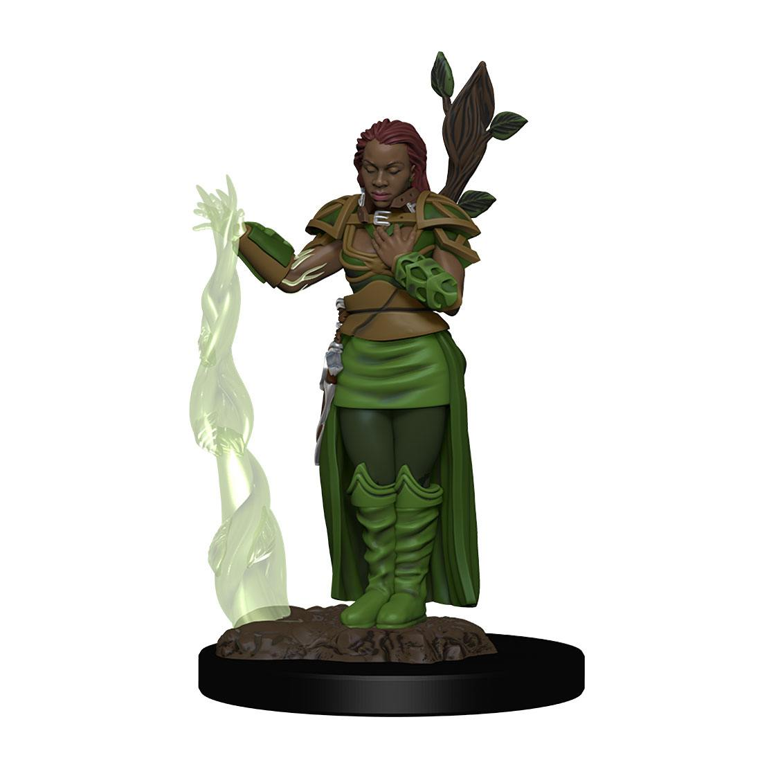 D&D Icons of the Realms Premium Miniature pre-painted Human Female Druid Case (6)