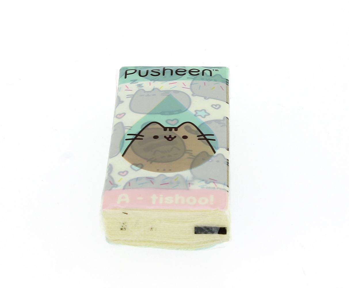 Pusheen Tissues Case (20)