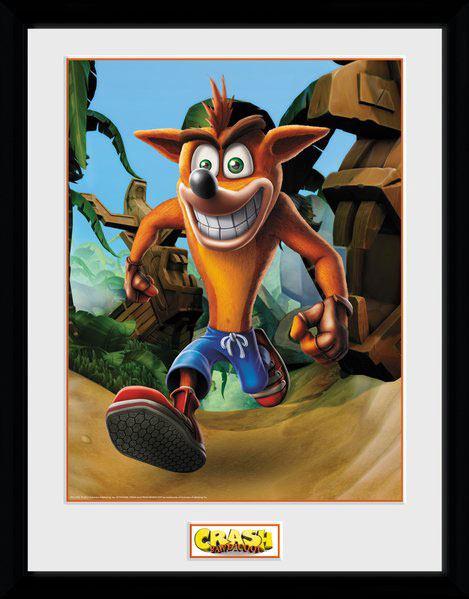 Crash Bandicoot Framed Poster Crash 45 x 34 cm