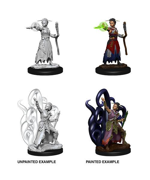 D&D Nolzur's Marvelous Miniatures Unpainted Miniatures Female Human Warlock Case (6)