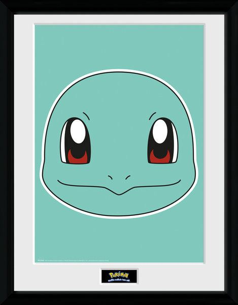 Pokemon Framed Poster Squirtle 45 x 34 cm