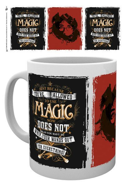 Harry Potter Mug Whip Your Wand Out