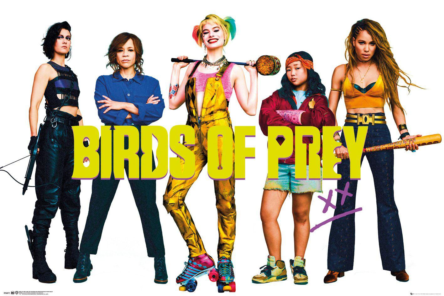 Birds of Prey Poster Pack Group 61 x 91 cm (5)