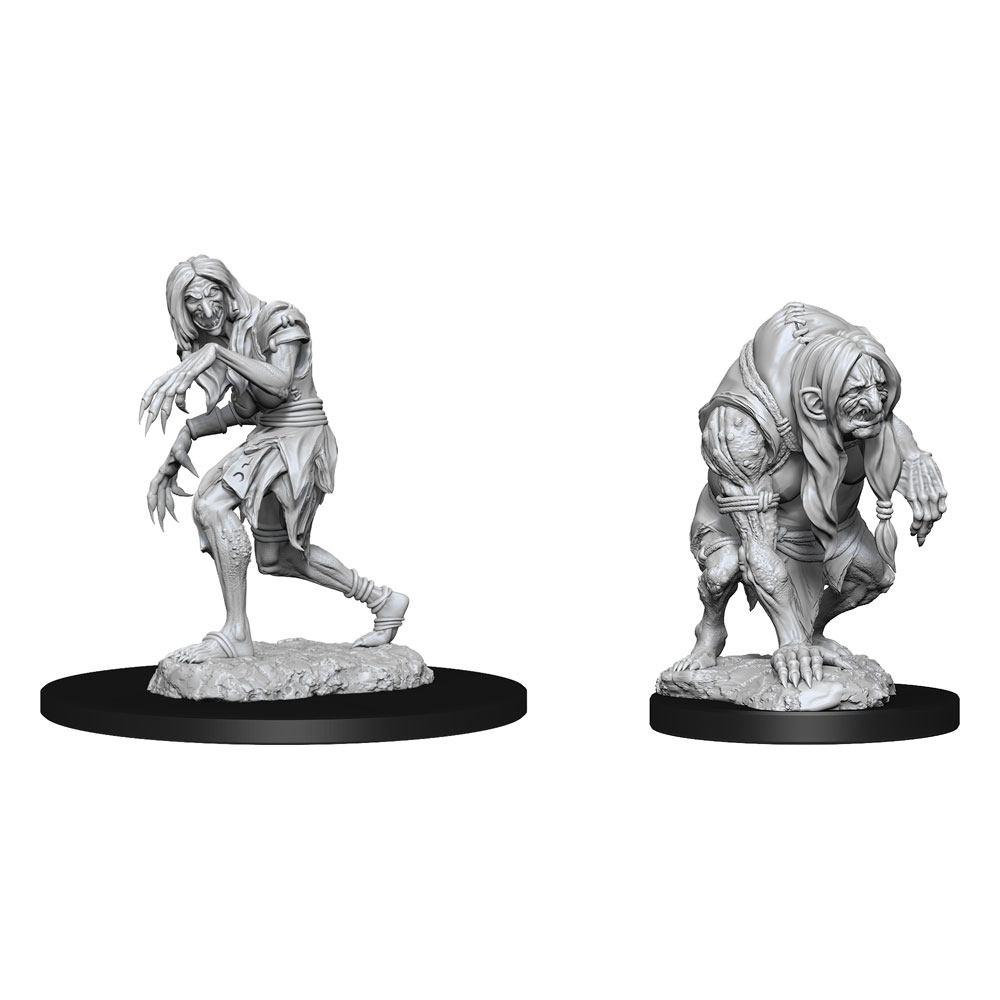Pathfinder Battles Deep Cuts Unpainted Miniatures Annis Hag & Green Hag Case (6)