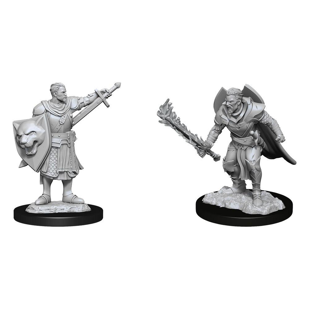 Pathfinder Battles Deep Cuts Unpainted Miniatures Human Champion Male Case (6)