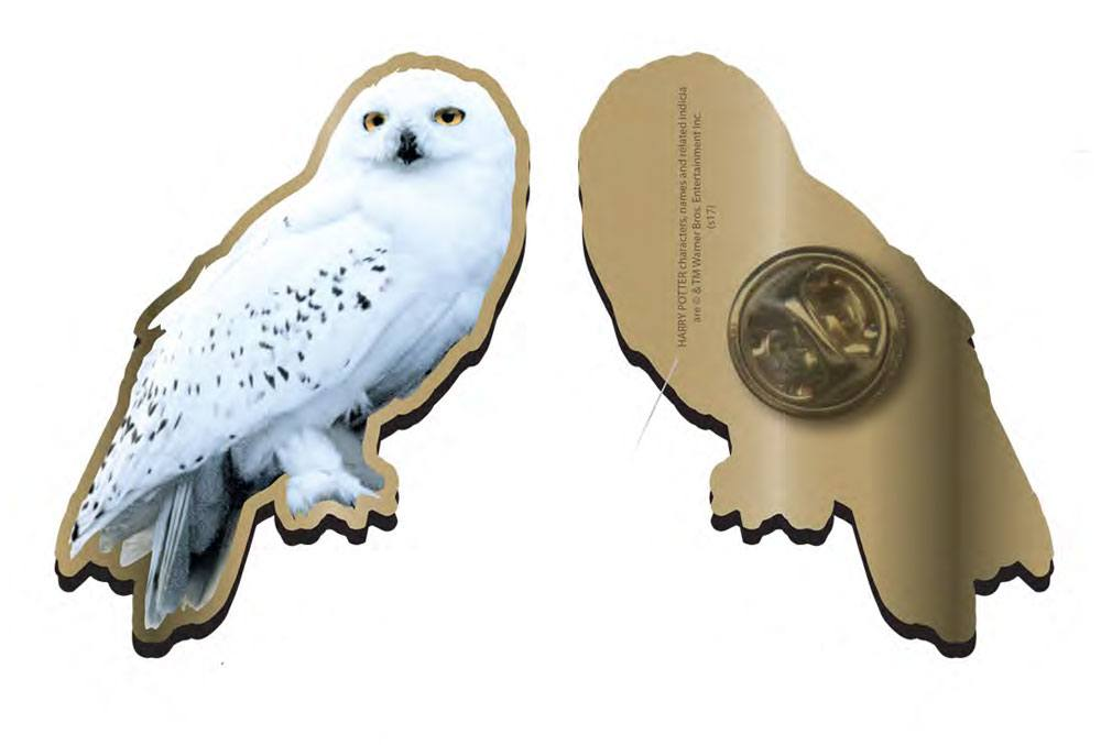 Harry Potter Badge Hedwig Case (12)