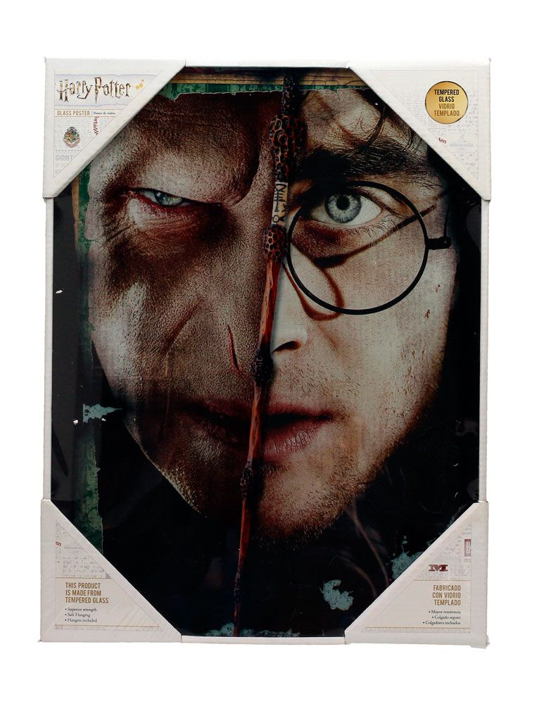 Harry Potter Glass Poster Harry & Voldemort 30 x 40 cm